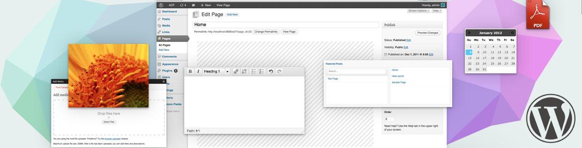 Advanced Custom Fields для WordPress