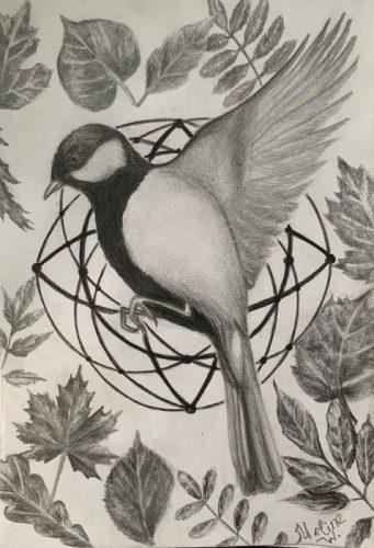 <p>Птица - рисунок карандашом</p>